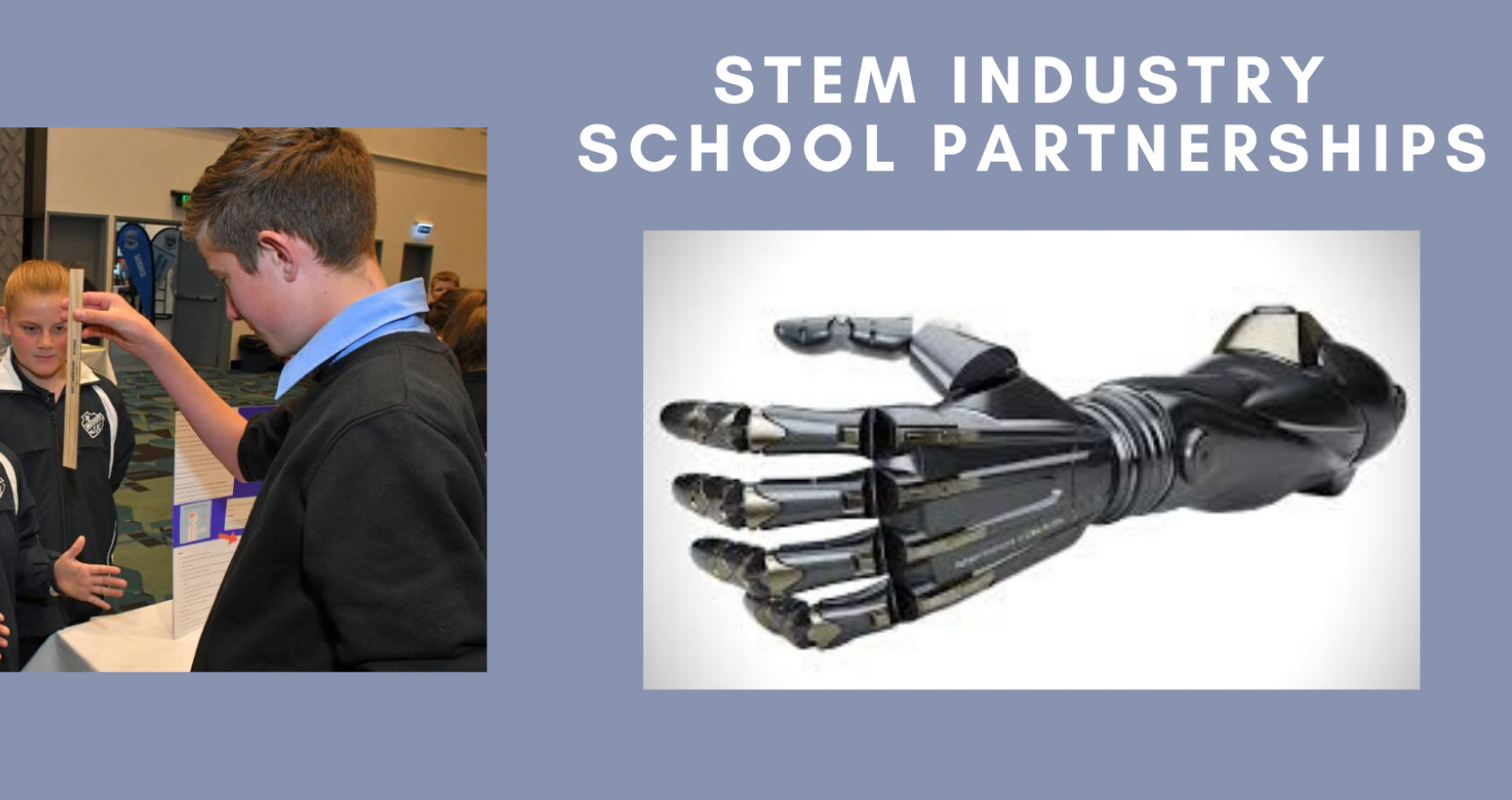 STEM Industry Partnership